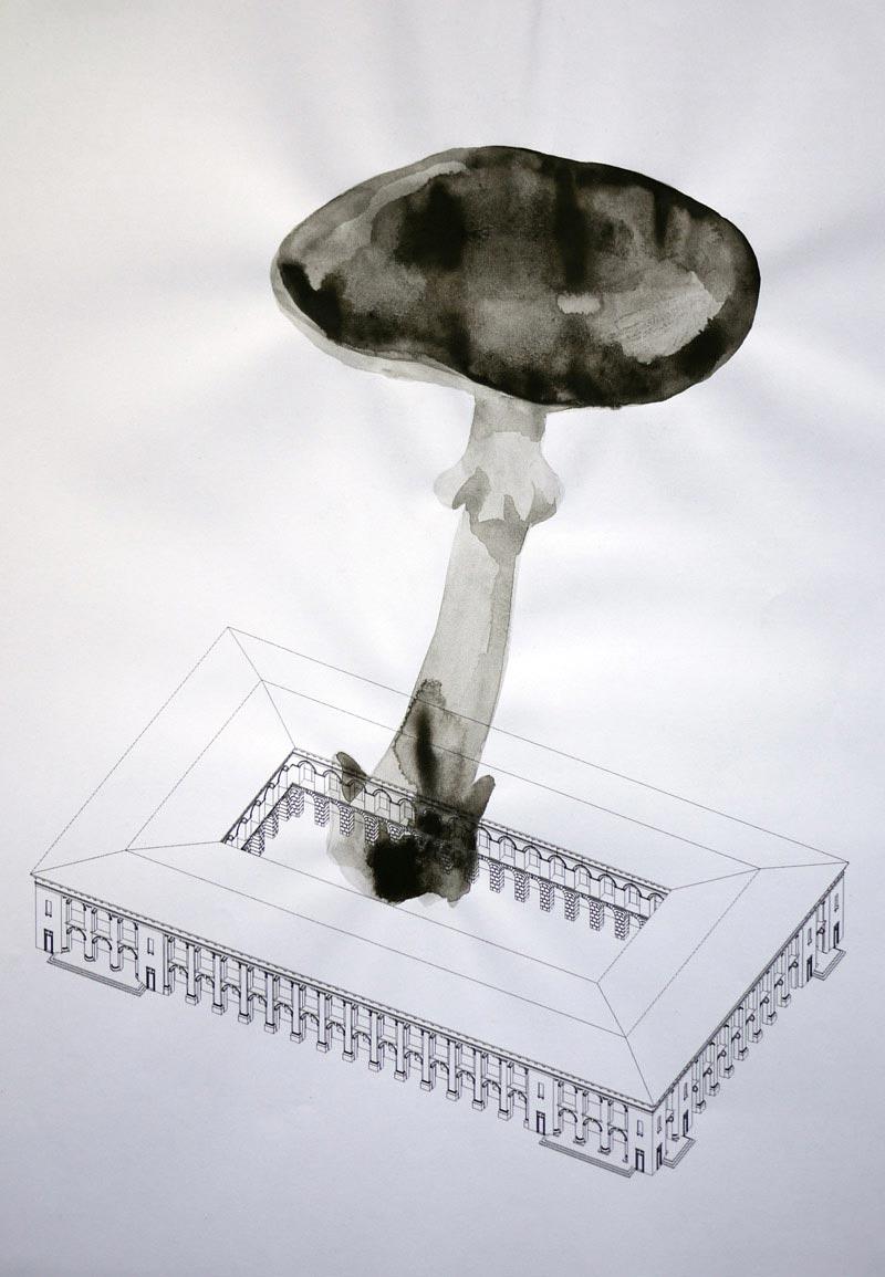 Nikita Kadan Mushroom